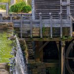 Fearless Goose Courageous Goose Mill  - wileydoc / Pixabay